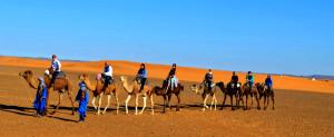 marrakech-desert-tours-camel